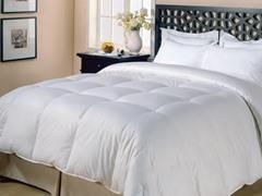Micro Fiber Comforter-White-3 Sizes