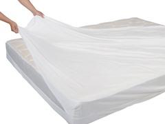 ExceptionalSheets 11-13 inch Waterproof Mattress Encasement-6 Sizes
