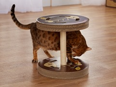 So Catty Cardboard Cat Scratcher