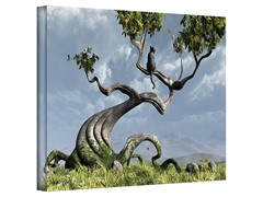 Cynthia Decker Sitting Tree Canvas