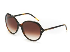 Dark Tortoise CL2252 Sunglasses