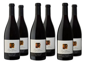 Renteria Wines Mixed Pinot Noir (6)