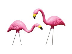 Flamingos Party Pack, 10-Piece