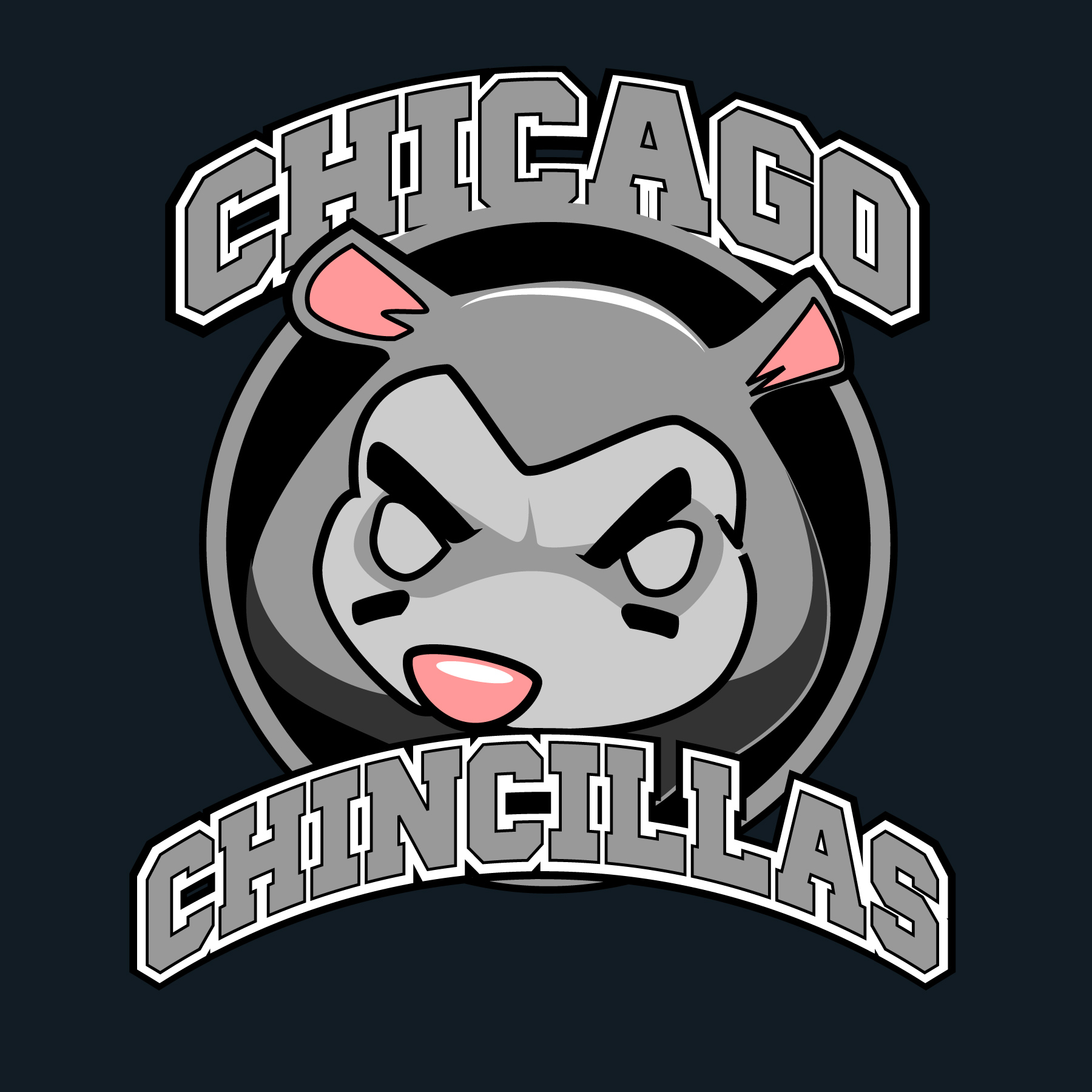 Chicago Chincillas
