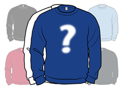 Random Blank Crewneck Sweatshirt 2-Pack