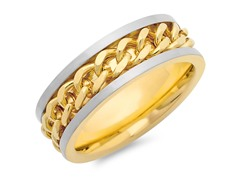 Titanium Two-Tone Ring w/ Chain