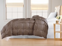 Down Alternative Comforter-Chocolate-3 Sizes