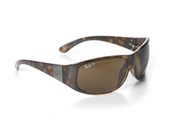 Ray-Ban RB4110 Sunglasses