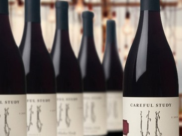 Careful Study Pinot Noir 6-pack
