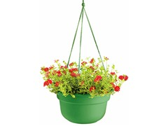 Hanging Basket, 10-Inch, Living Green