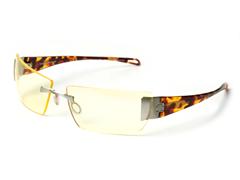 Rayne Adv Computer/Gaming Eyewear