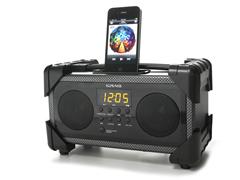 Dual Alarm Clock Radio