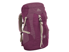 Women's Avocet 30 Backpack - Rose