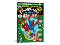 Spider-Man Marvel Team Up Issue Cover #9