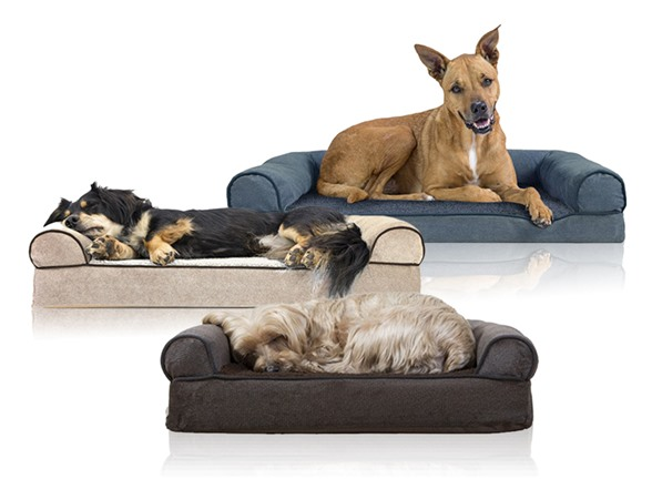 Remarkable Furhaven Orthopedic Sofa Pet Bed For Dogs And Cats Gmtry Best Dining Table And Chair Ideas Images Gmtryco