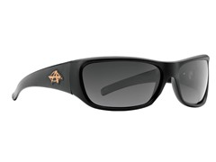 Rally Polarized - Black/Smoke