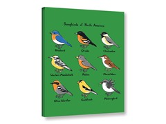 Songbirds of North America (4 Sizes)