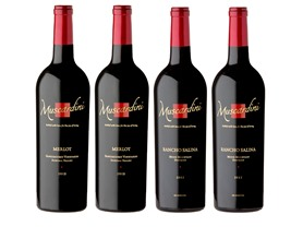 4-Pk. Muscardini Mixed Red