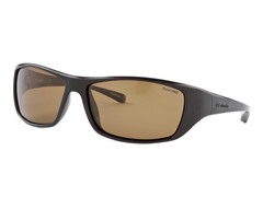 Women's Thunderstorm Polarized - Brown