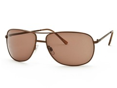 Shiny Brown/Brown Aviator 22 Sunglasses