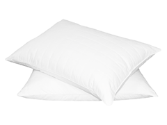 Quilted Feather Pillows Set of 2