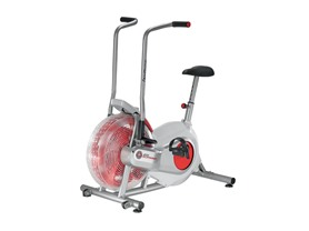 Schwinn Airdyne Upright Stationary Bike
