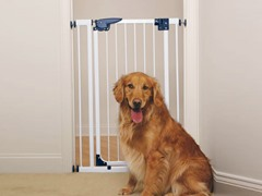 Pet Studio Pressure Mounted X-Tall Gate White