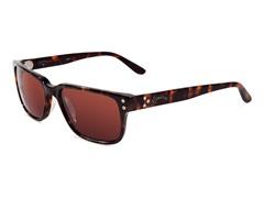 Rangefinder Sunglasses, Tortoise