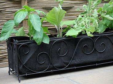 Tierra Garden: Make Them Plants