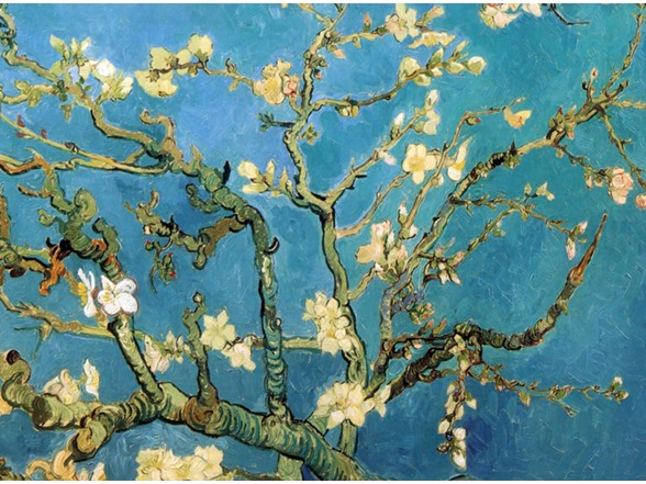 almond blossom. Black Bedroom Furniture Sets. Home Design Ideas