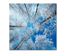 Frozen Sky (3 Sizes)