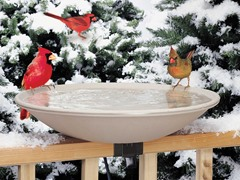 Heated Bird Bath with Mounting Bracket