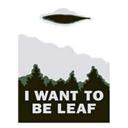 i want to be leaf