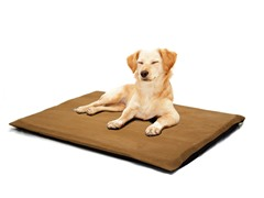 "Orthopedic 2"" Foam Pet Bed - Suede Camel"