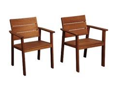 2-Piece Eucalyptus Chair Set, Cushions