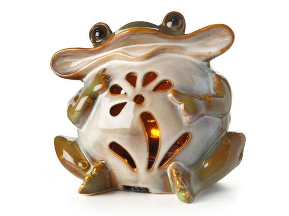 warmer frog