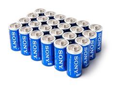 C STAMINA PLUS Alkaline Batteries - 24pk