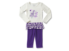 Purple Zebra Legging Set