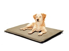 "Orthopedic 2"" Foam Pet Bed - Suede Clay"