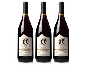 Cathedral Ridge Columbia Valley Pinot Noir (3)