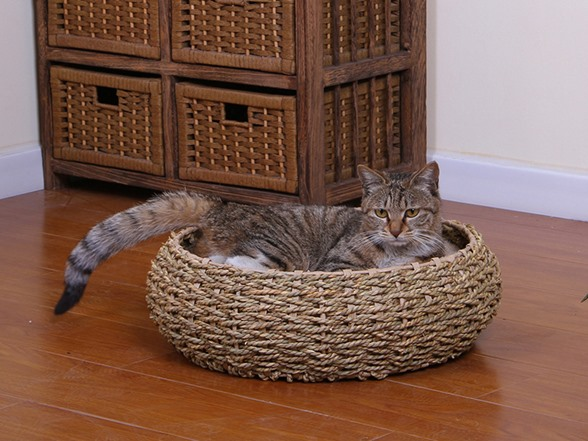 Seagrass Round Pet Bed With Pillow
