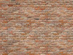 Brick Wall Wall Mural