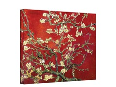 Almond Blossom - Red Interpretation