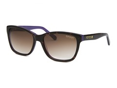 Women's Wellfleet Sunglasses