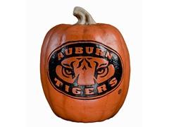 Resin Pumpkin - Auburn
