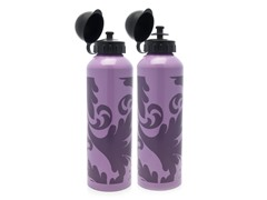 Arabesque Plum Aluminum Water Bottle 2-Pack