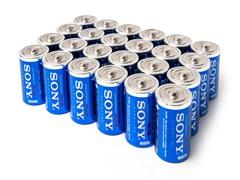 D STAMINA PLUS Alkaline Batteries - 24pk