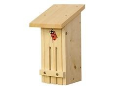 Small Ladybug Habitat