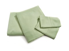 Rayon from Bamboo Sheets-Grass-Queen