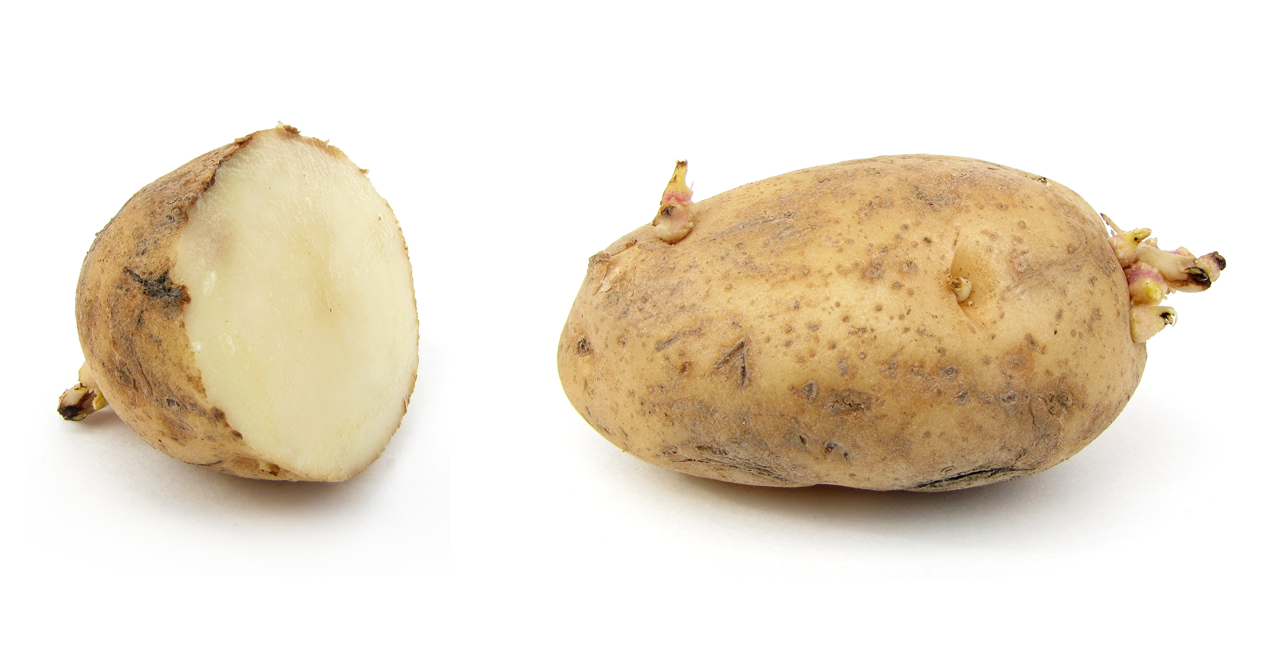 The Debunker: Are Most Nutrients in a Potato Really Found in